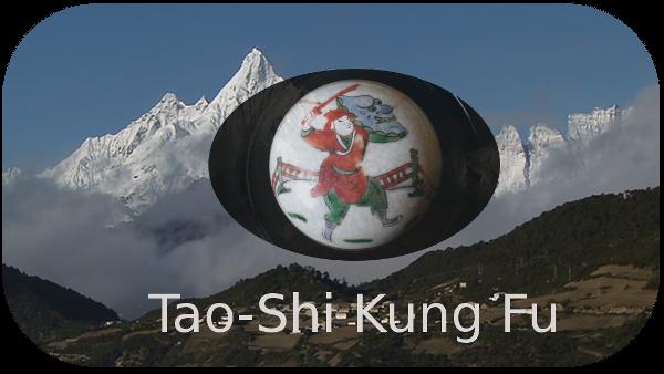 Tao Shi Kungfu